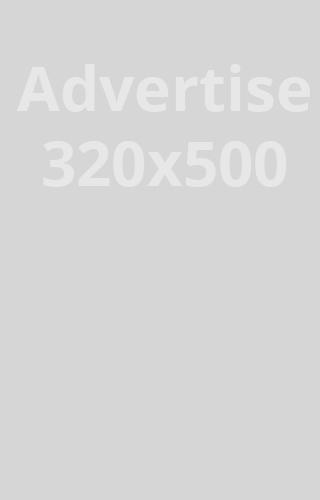 Annonse 320 x 500 px, Kr. 6 000,- pr måned