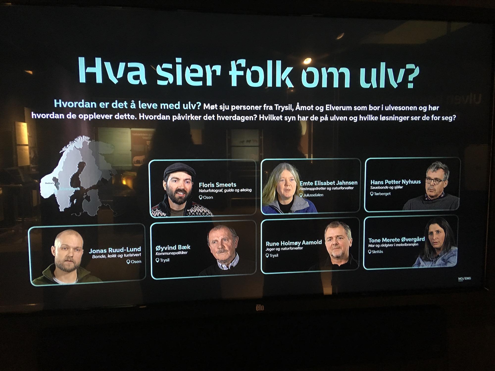 FOLK: Hva sier folk om ulv? Foto: Elise Lund