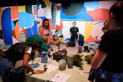 De besøkende lagde alle sine egne planteterrarium. På den måten setter die sitt eget preg på utstillingen KlimaLab