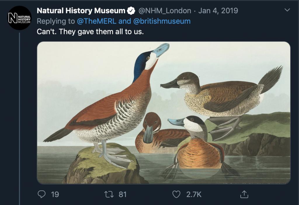 """Skjermbilde av svartweet til the MERL fra Natural History Museum med et maleri av ender, og teksten """"Can't. They gave them all to us"""""""