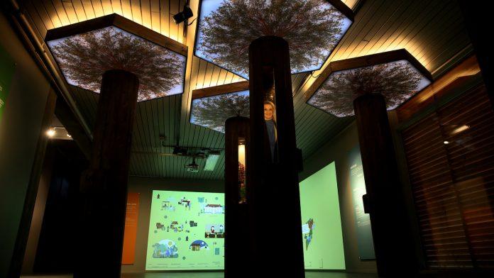 Bilde av et utstillingsrom. Det er mørkt med noe lyssetting i taket (gult) og en grønn lysende vegg i bakgrunnen med noe motiver vi ikke ser ordentlig.