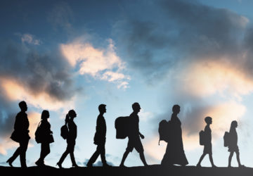 Migration-360x250.jpg