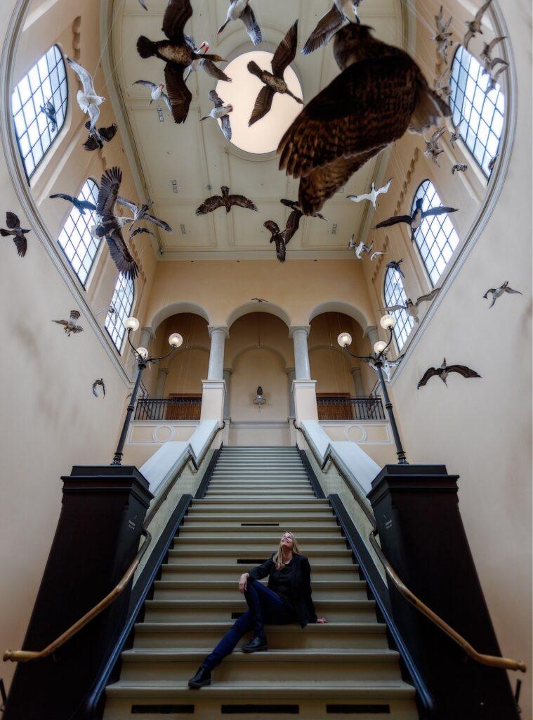 Trappehallen på museet. Stor rund lampe i taket og utstoppede fugler som henger fra taket